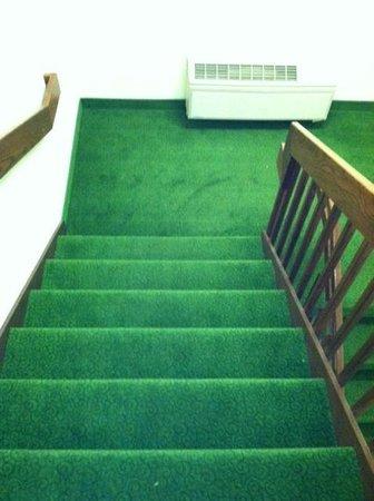 Homewood Suites by Hilton Erie: Open, carpeted, well lit stairwells for those who wish to take the stairs.
