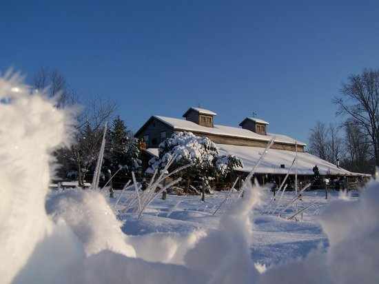 Crazyhorse Ranch & Lodge: A Snowy Morning