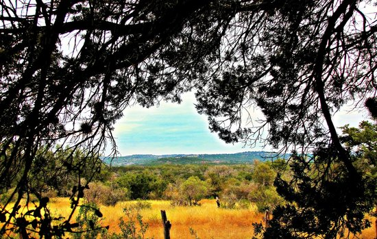 Pedernales Falls State Park: Scene from the trails...