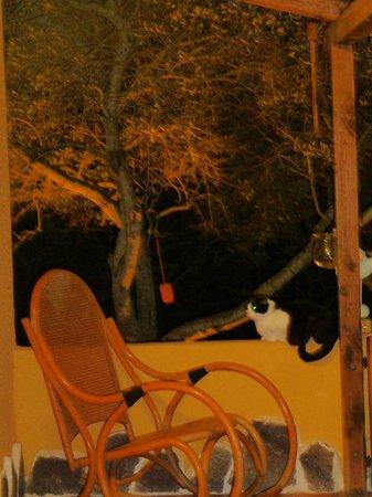 B & B La Gatta sul Tetto: sedie a dondolo