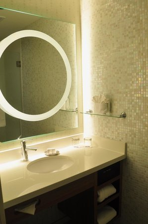 SpringHill Suites Dallas Richardson / Plano : Shower Room
