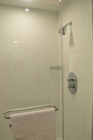 SpringHill Suites Dallas Richardson/Plano: Shower Room