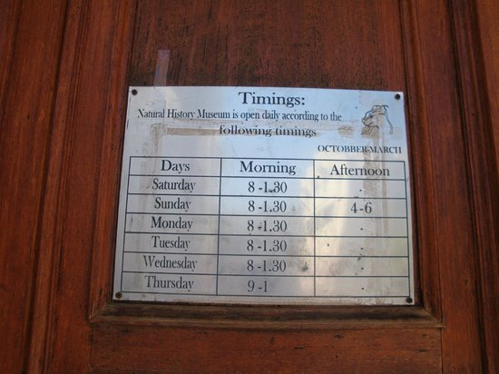 Natural History Museum : Öffnungszeiten