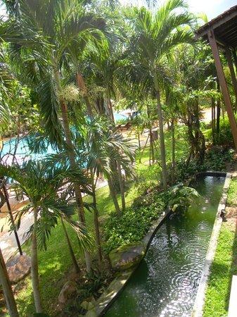 Ravindra Beach Resort & Spa: Вид из окна. Это здесь поют волшебные лягушки. Чем выше от них, тем ночью вам спокойнее))