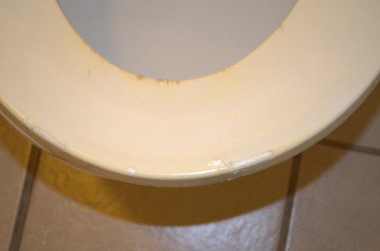 Americas Best Value Inn: Toilet