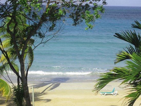 Hotel Riu Palace Tropical Bay: beach.