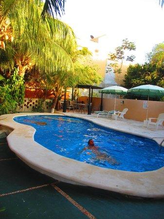Maya Bric Hotel : PILETA