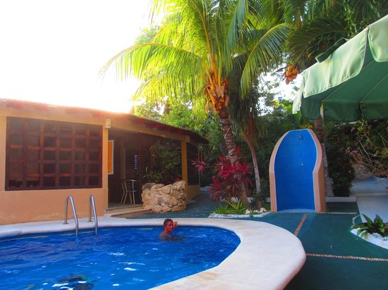 Maya Bric Hotel : COMEDOR