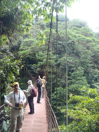 Monteverde Lodge & Gardens: On the swinging bridge in the Monteverde Cloud Forest Reserve
