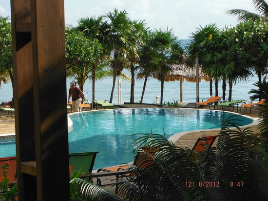 Laru Beya Resort & Villas: This was our view every morning, clean windows - no - there is none