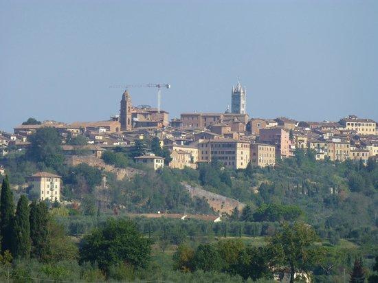 Aia Mattonata Relais: VIEW OF SIENA