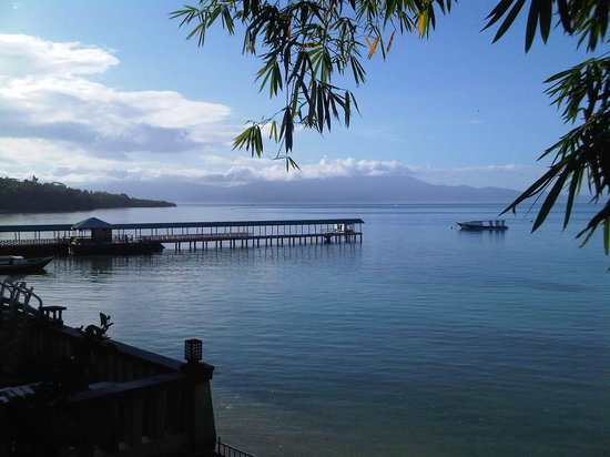 Froggies Divers Bunaken: View from my room