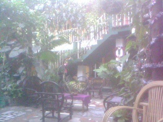 Villa Lupita: vista general