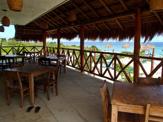 Almaplena Eco Resort & Beach Club: Lunch/Dining area