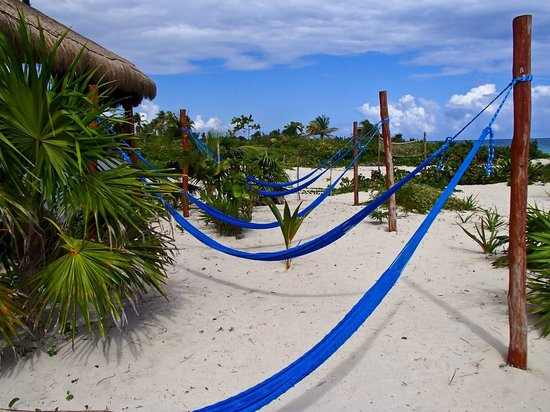 ‪‪Almaplena Eco Resort & Beach Club‬: Hammocks in the sun