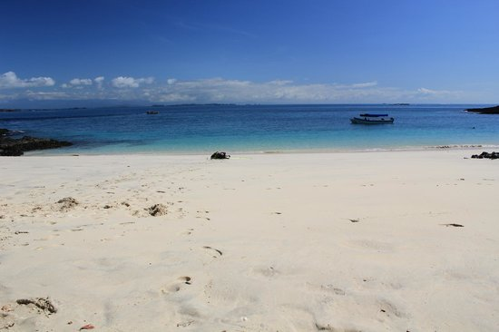 بوكاس ديل مار هوتل: Beach tour 