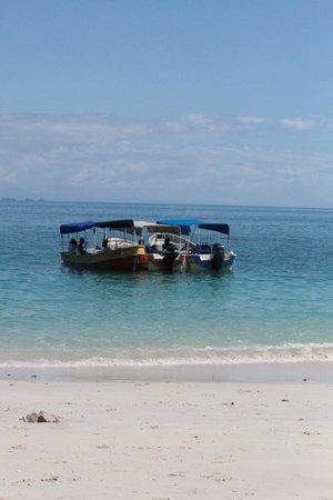 بوكاس ديل مار هوتل: Our water taxi for the island excursions. 