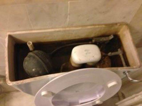 Hotel Alka Classic: トイレのタンクの中をのぞくと、カビだらけ、サビだらけ、水垢だらけ