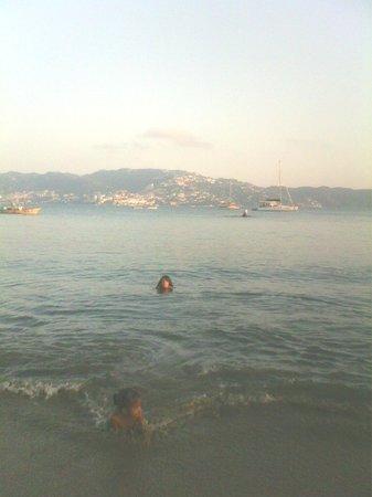 Miku nadando en playa Tamarindos