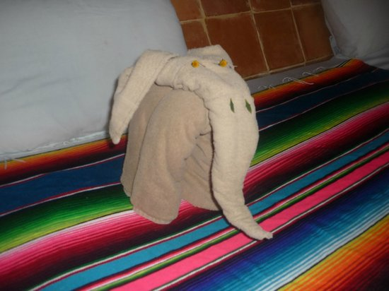 Safari Inn: My favorite, towel elephant!