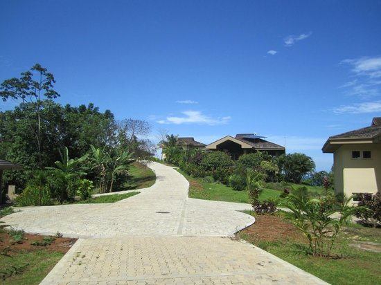 Red Frog Beach Island Resort & Spa: View looking up the road from Villa 9