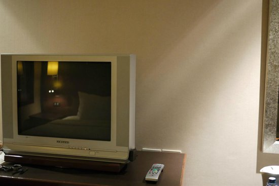 Novotel Bangkok Suvarnabhumi Airport: Tube TV - didn't come here to watch tv so didn't care