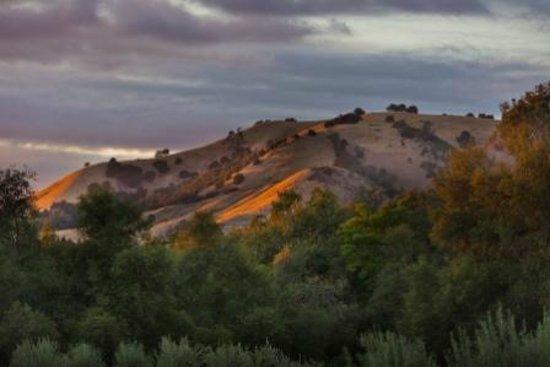 Villa Florentina: Majestic Views
