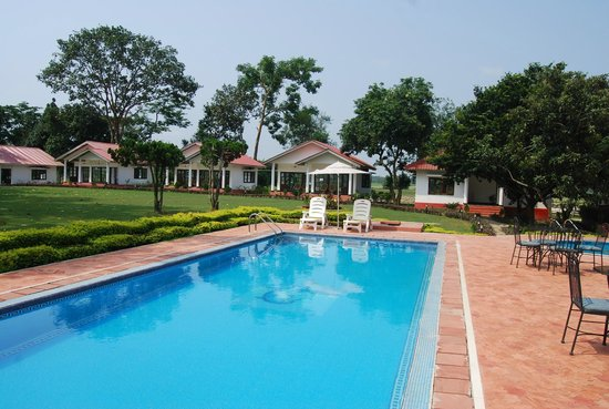 Kaziranga Golf Resort: Rejuvenating splash pool