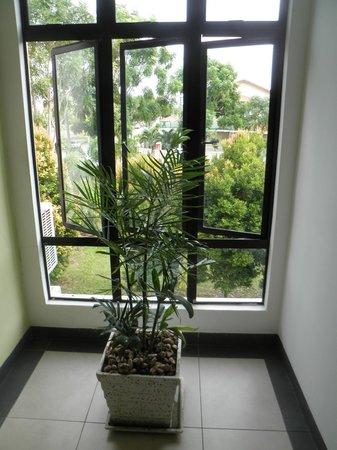 Sunflower Hotel Malacca: エコノミーホテルだけど緑もあります