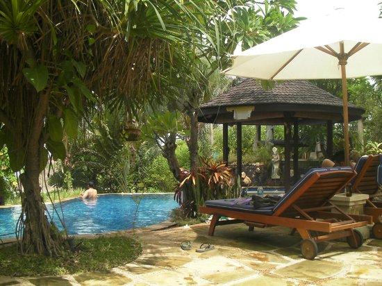 Jepun Bali Villa: Pool area