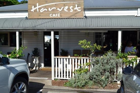 Harvest: Great spot for lunch