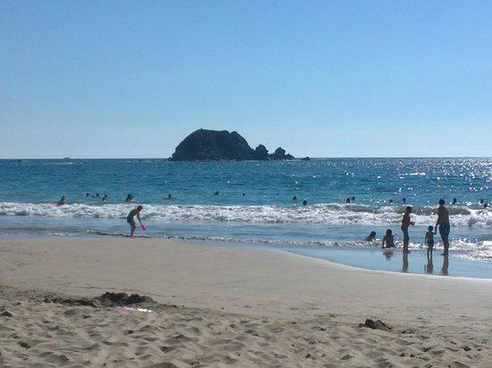 Hotel Fontan Ixtapa: Playa