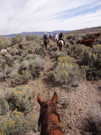 Hunewill Guest Ranch: Out on the trail