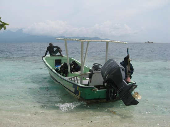 Sanbis Resort: A dive excursion