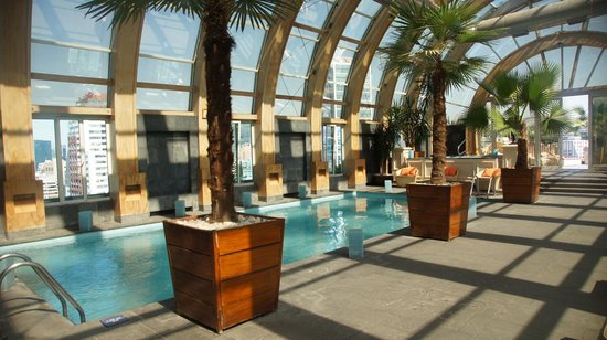 The Ritz-Carlton, Santiago: SPA-Pool