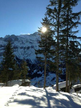 Hotel Gletschergarten: Schneewanderung Rasthysi nach Bort