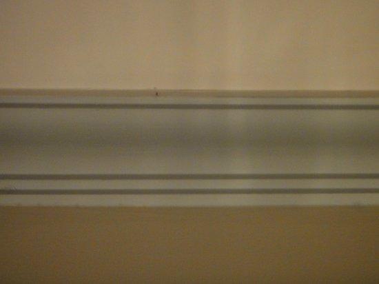 Movenpick Hotel Cairo-Media City: Mosquito on room ceiling
