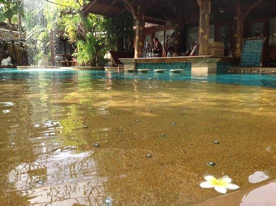 The Baray Villa: bar de la piscine commune
