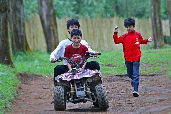 Grafika Cikole: Kids playground