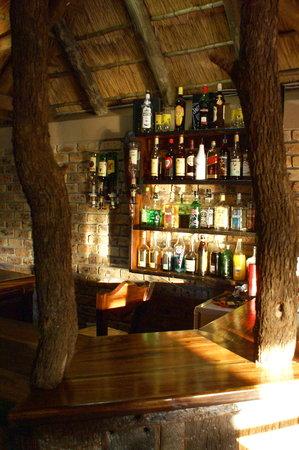 ครอคโคไดล์ ครูเกอร์ ซาฟารีลอดจ์: Bar
