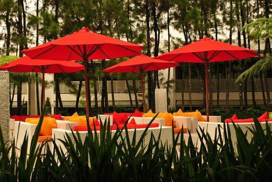 บูมี บันดาวา: Terrace outside main buildings