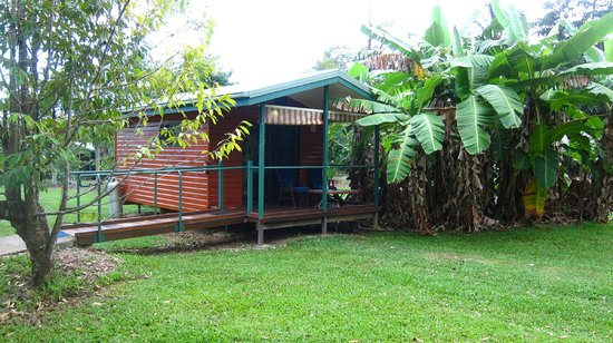 Cape Trib Farmstay B&B: Cabin
