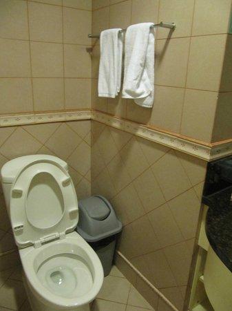 Green Court Serviced Apartment: Bathroom