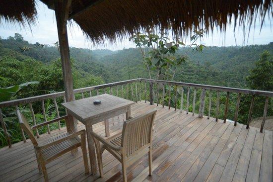 Puri Sebatu Resort: View from 101