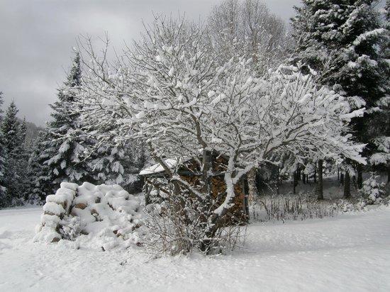 Evasion Gite et Refuges: Le nature bien décorée...