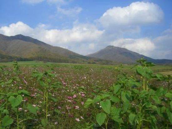 Mt. Hiruzen: 蒜山