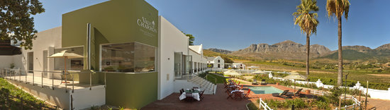 Val Du Charron Wine & Olive Estate Guesthouse: Val du Charron is a working wine and olive farm.