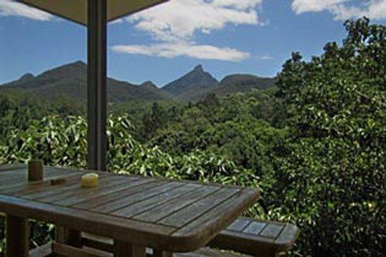 Mavis's Kitchen and Cabins : Secret Cabin