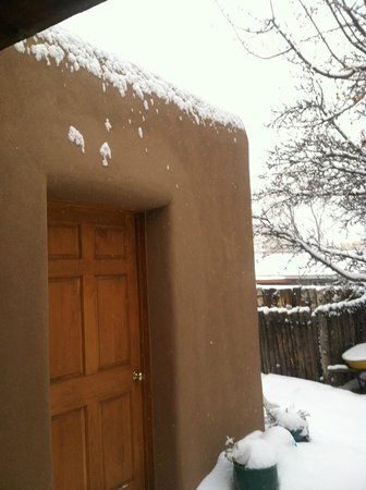 Dunshee's: back yard after the Snow