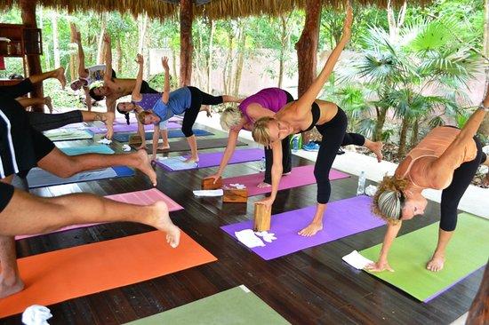 Jivana Yoga Retreats: more view from the yoga shala